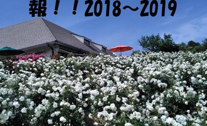 かのやバラ園の秋祭りと入場料が無料の日情報も!!2018~2019