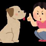犬のしつけはなぜ難しい?愛犬の内面から変化する方法