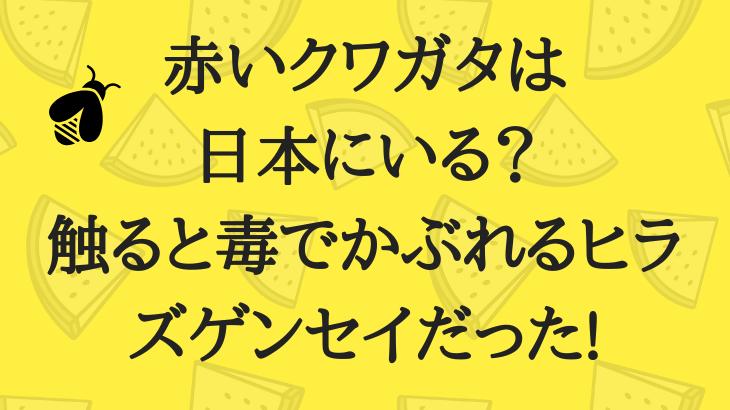 赤いクワガタは日本にいる?触ると毒でかぶれるヒラズゲンセイだった!