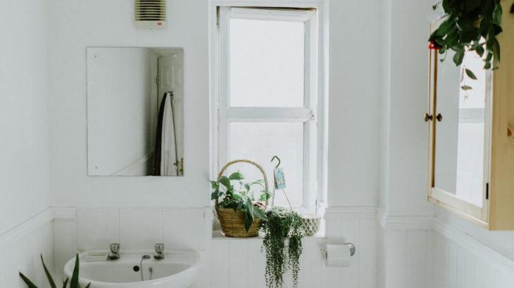 トイレ掃除の開運効果は?観葉植物やカラーなどトイレ風水を実践!