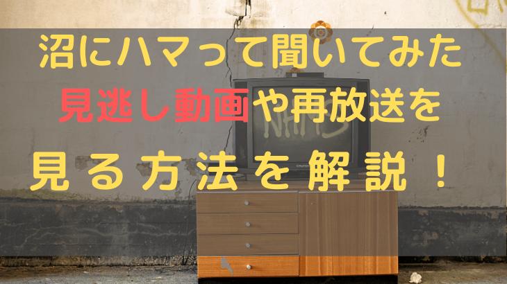 NHK【沼にハマって聞いてみた(沼ハマ)】見逃し動画や再放送を見る方法を解説!